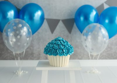 portfolio cake-smash & melkbad